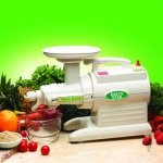 Estrattore Succo Juicer Green Star Gs 1000 ..
